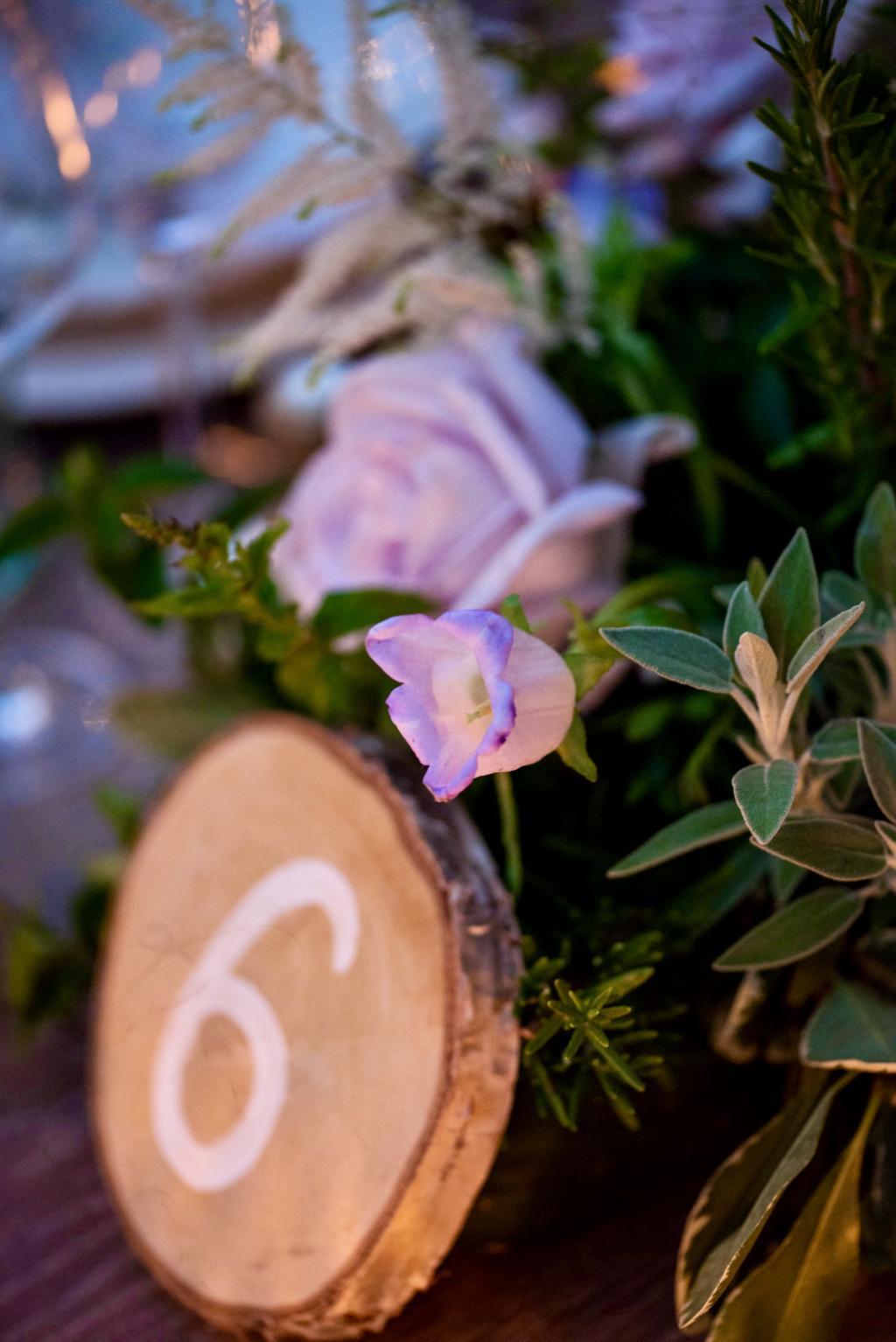 PE&N Sinterina wedding - Image 20