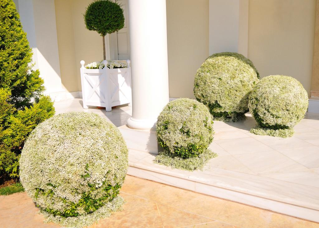 E&J Athens wedding - Image 7