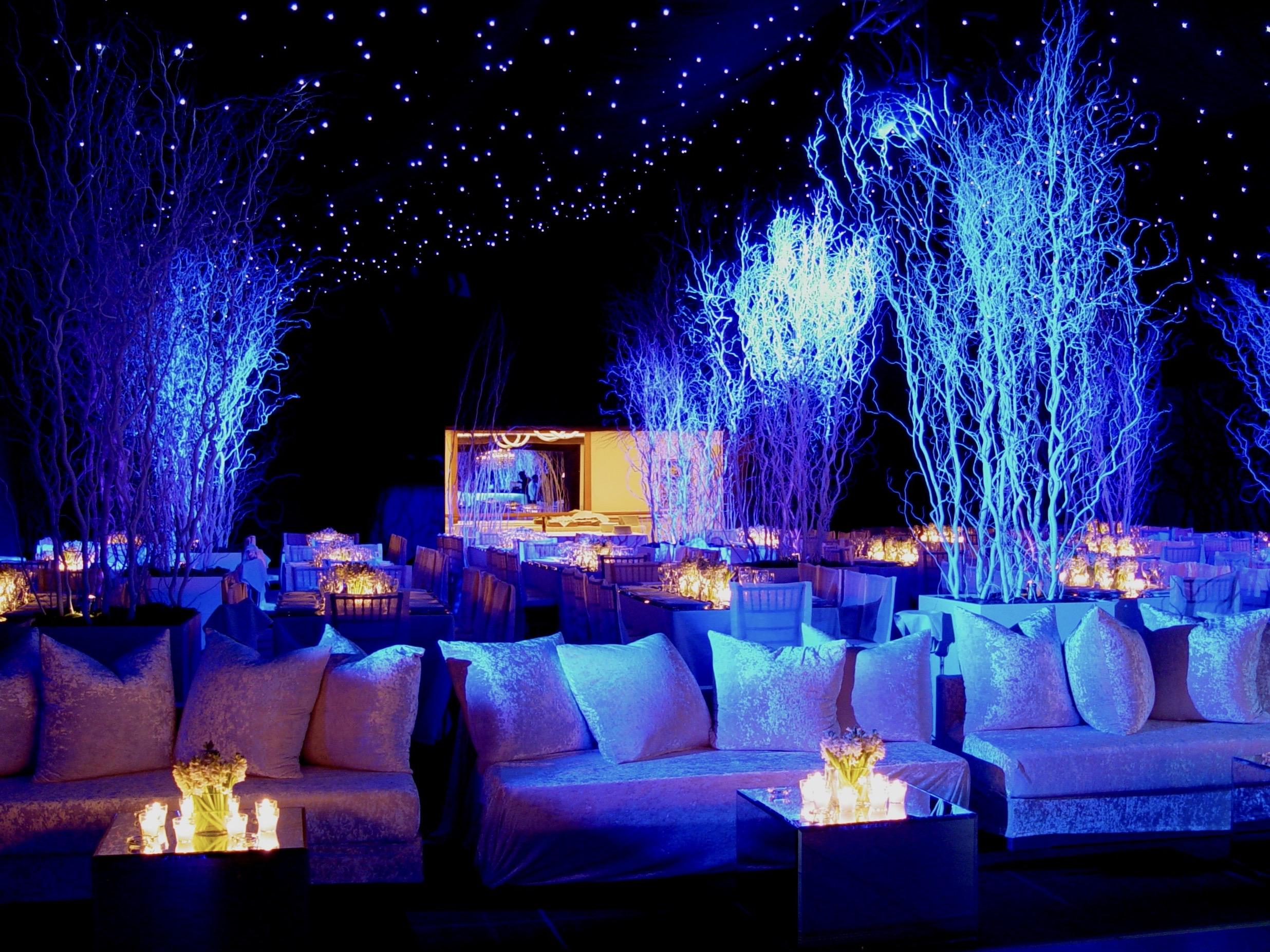 White Christmas party - Image 13