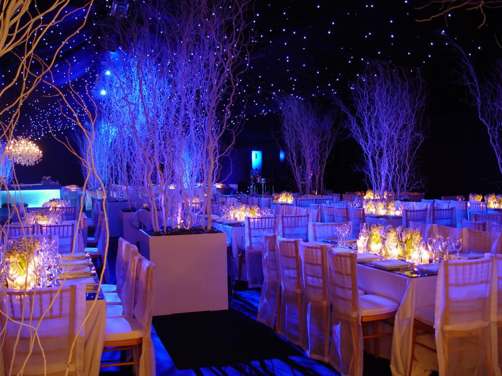 White Christmas party - Image 12