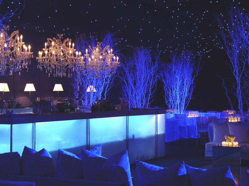 White Christmas party - Image 8