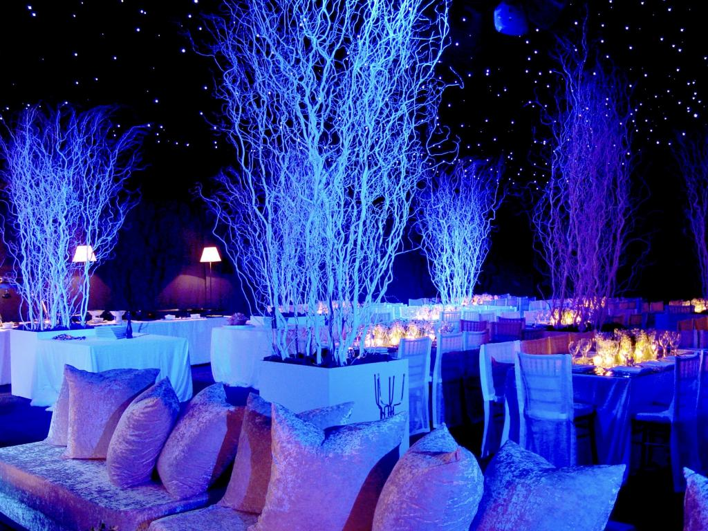 White Christmas party - Image 5