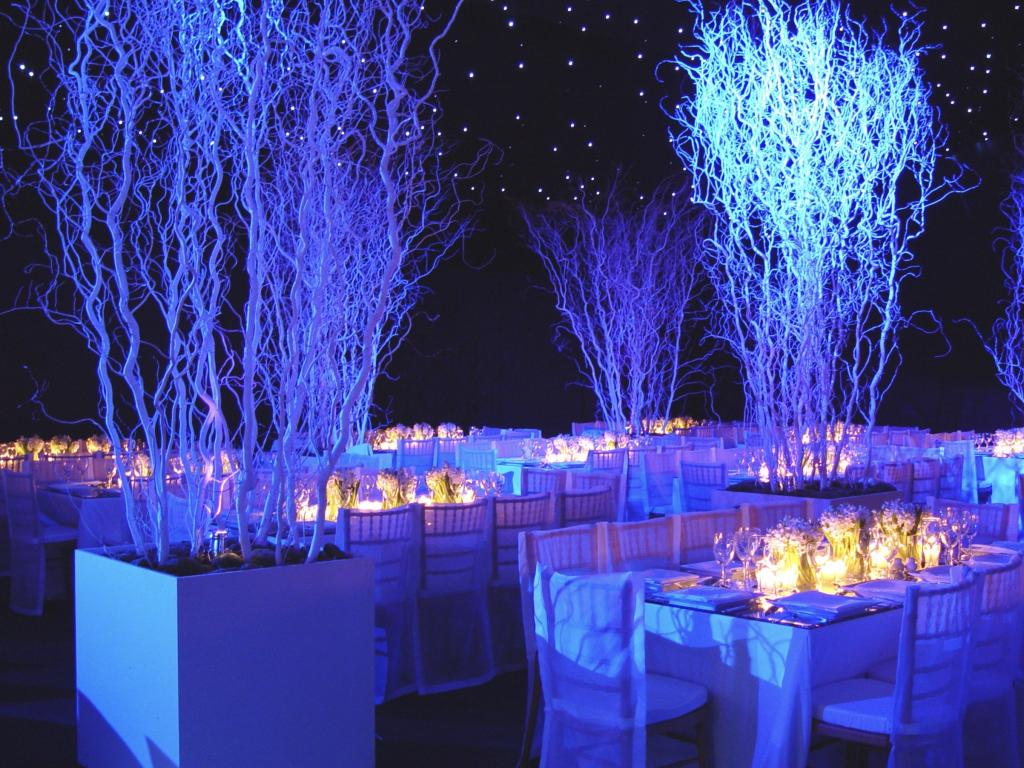 White Christmas party - Image 11